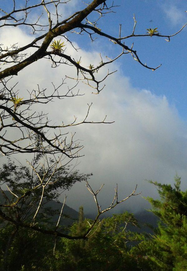 Excursión Valle de Antón